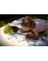 Kocyk Maluszka Alicja w Krainie Czarów Pastelowy Róż, 95x115 cm