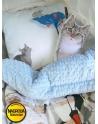 Kotek sensoryczny Maszkotka bawełna i malinowy minky