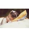Poduszka Alicja w Krainie Czarów 30x40 cm - oryginalne tło